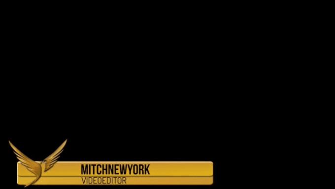 Mitch LT example