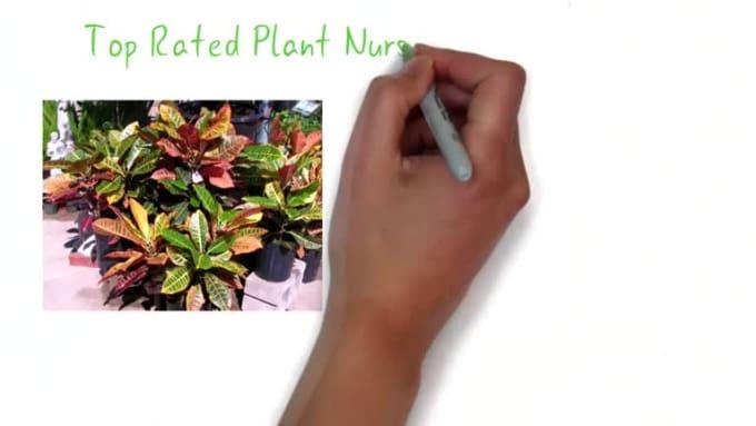 Plants&Planters_1