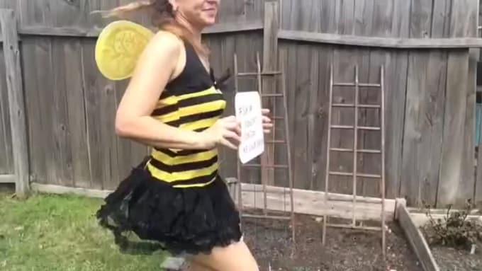 Dclover1 Bumblebee dance 3