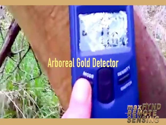 Gold Detector V1