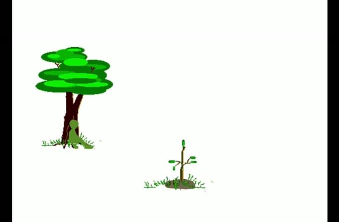 final_planting