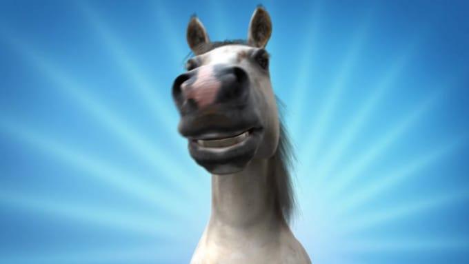 jjhutchens2014 funny horse