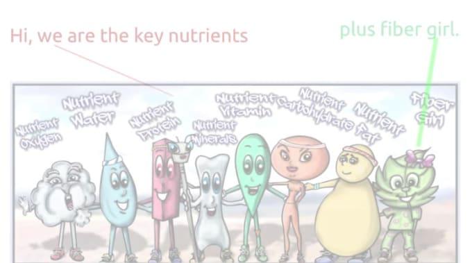 Keynutrientsplusfiber-v4