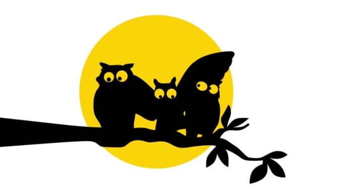 three_mad_owls