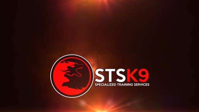 STSK9 logo Intro