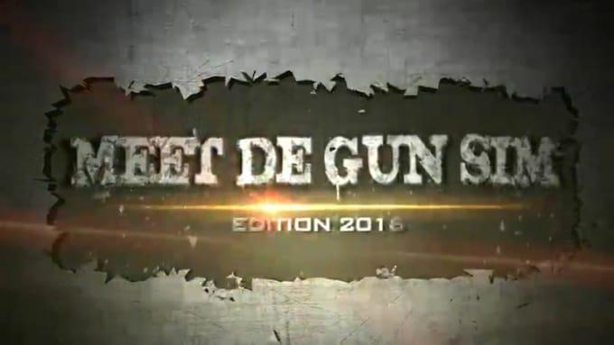 MEET DE GUN SIM
