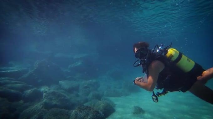 underwater-full-hd