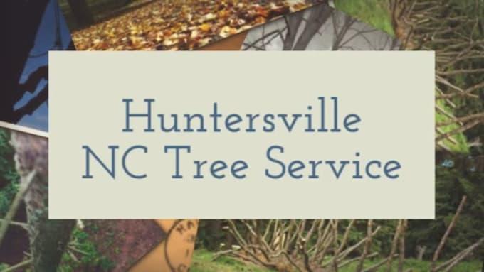 Huntersville_NC_Tree_Service