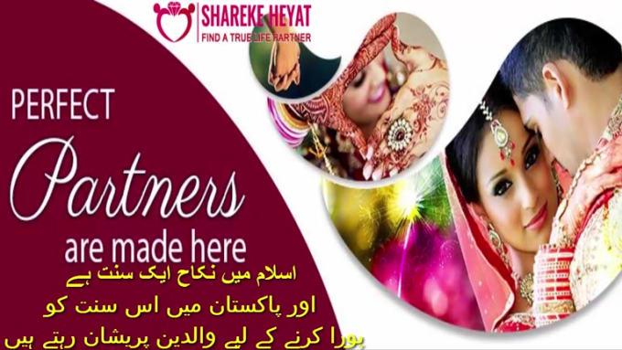 Sharekehayat