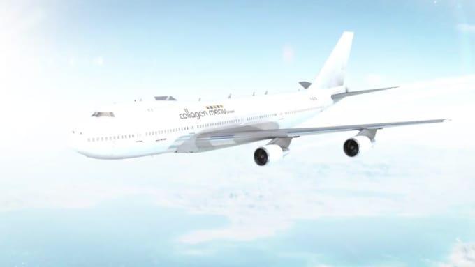 globalpraxis  Plane video done
