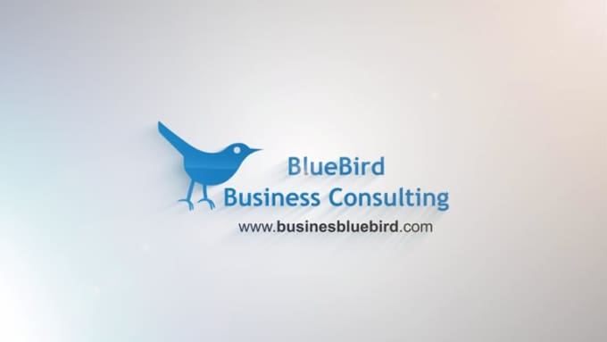 BB Business Consulting
