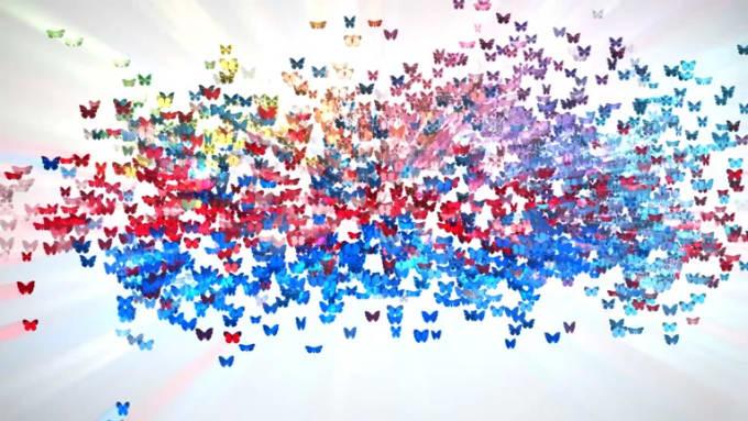 _butterflies-new