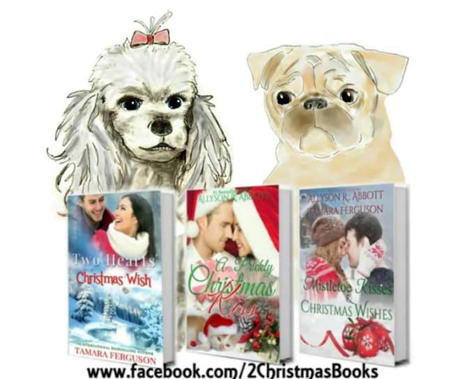 2christmas books MP4