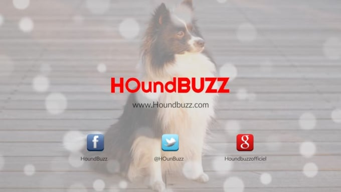HoundBuzz_outro
