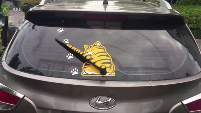 xxx xxx moving tail cat