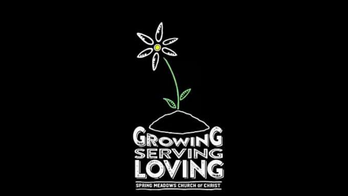 Flower Logo Intro Video