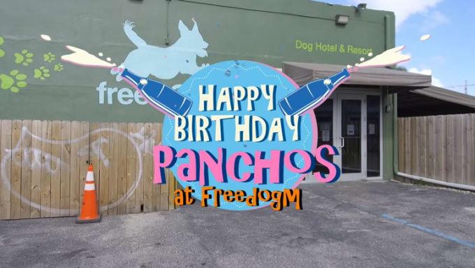 Panchos Birthday at Freedogm