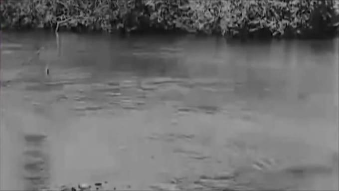 lund1082 Brad Birthday silent movie edit