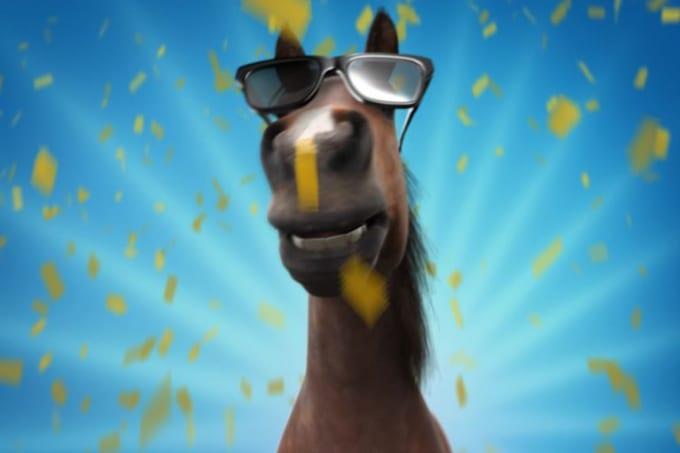 Funny Horse - Rob -----