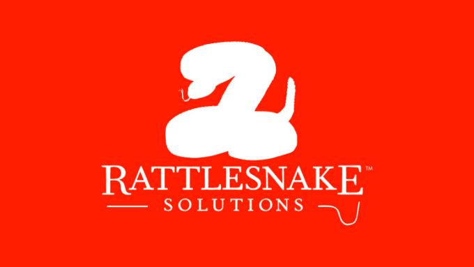 RattleSnake Animation 2