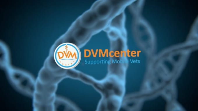 dvm-center-4