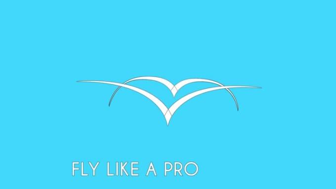 Fly like a Pro Animation