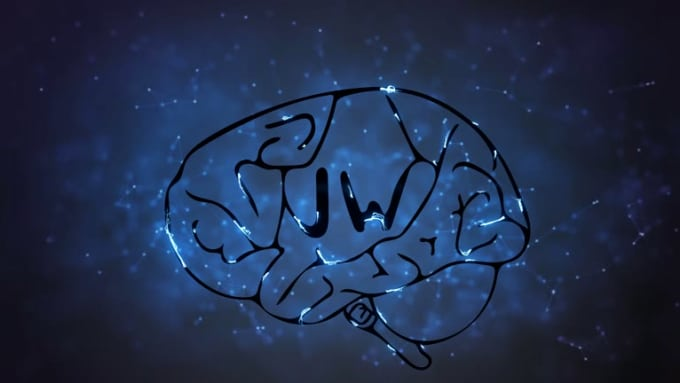brain 20