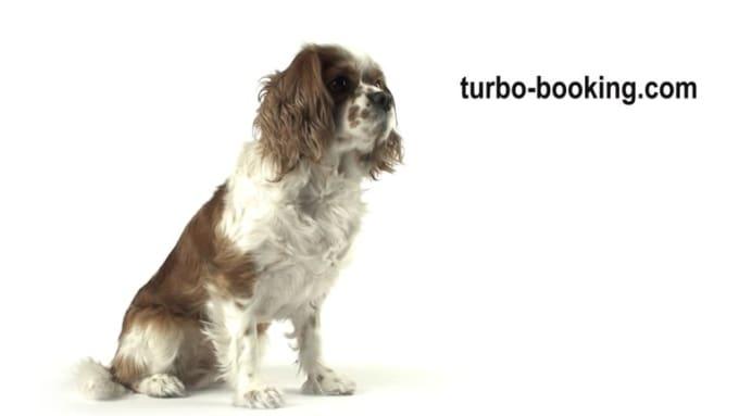 turbo-booking