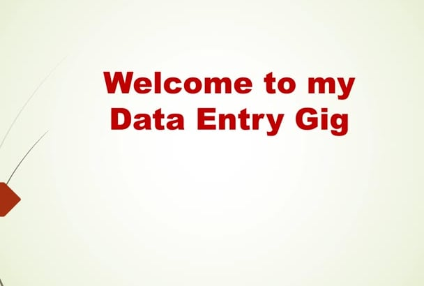 complete any type of data entry jobs or copy paste