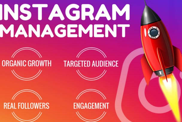 Instagram marketing and grow followers fiverr do instagram marketing and grow your followers stopboris Image collections