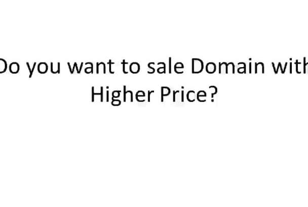 write Flippa Persuasive Sales Letter for Domain