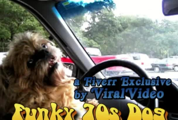 brand this retro funny dog driving video with an url or text to promote a site