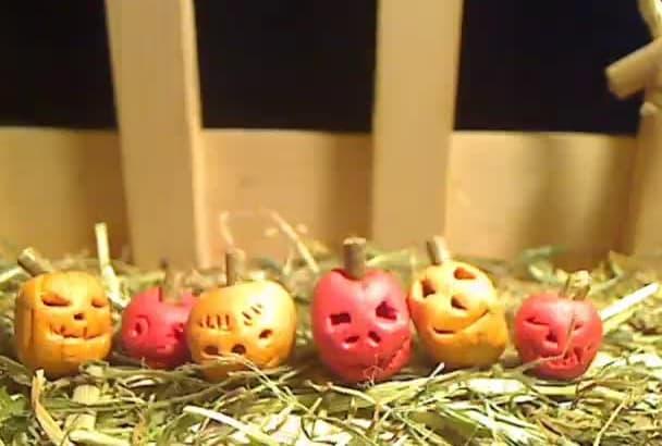 do let the hallopumpkin present your tiny message