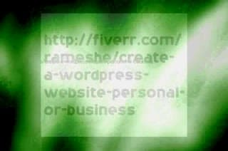 create a Wordpress Website Personal or Business