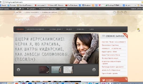 set up, install, fix, WordPress, create a website