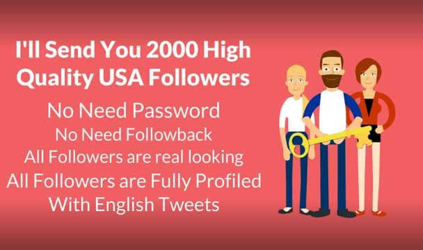 send 2000 Usa Twitter FOLLOWERS