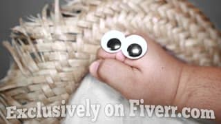hand puppet video message