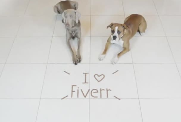 make my Dogs write your message