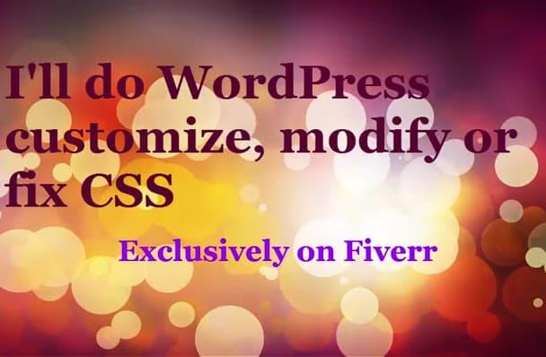 customize wordpress, modify or FIX WordPress error fast