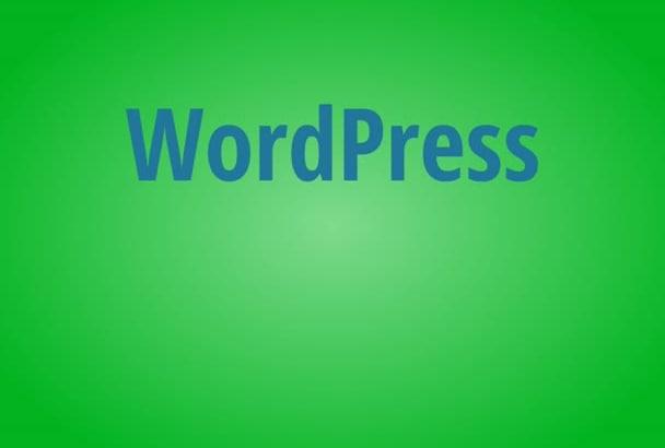 customize WordPress theme fast