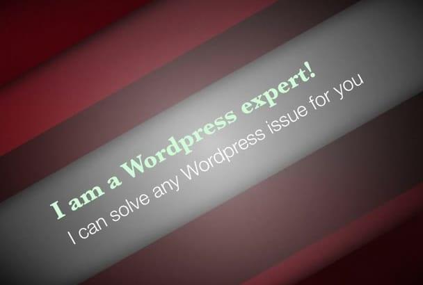 do wordpress customization and API integration