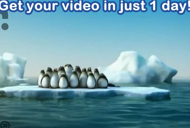 advertise your company with this funny penguins teamwork video