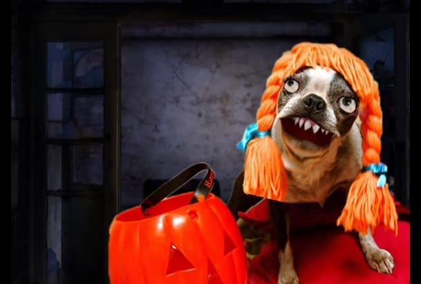 do animated  Halloween Dog That can speak your words
