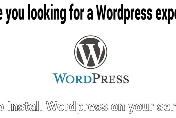 install setup customize wordpress theme