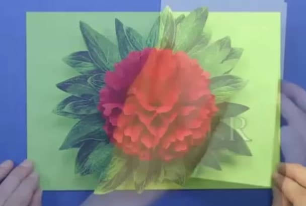 make handmade pop up flower card with portrait of your beloved on front side