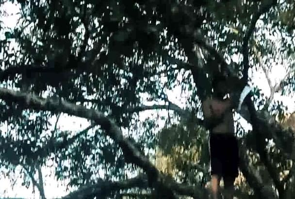 show your message and jump  to cannel from tree like Tarsan