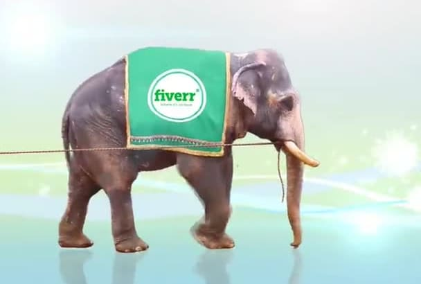 make an elephant promote your company