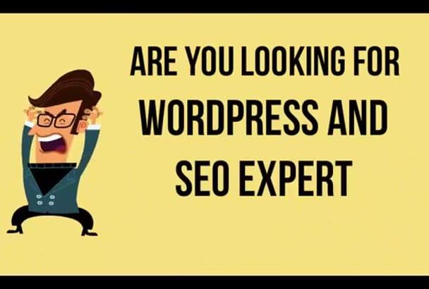 install WordPress,Fix Errors and Customize