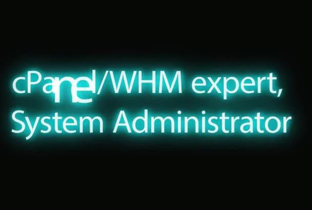 do any cpanel,whmcs,wordpress and webhosting tasks