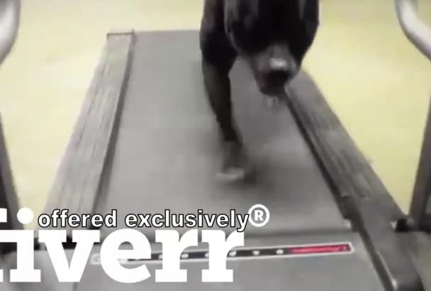create with your logo this never give up treadmill video